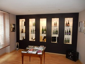 Jogaris-peintre-peinture-a-chalons-en-champagne-presentation